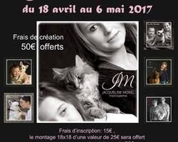 Studio Morel - Isigny-sur-Mer - Galerie photo - Maîtres, Maîtresses & Animaux adorés
