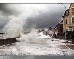 Studio Morel - Isigny-Sur-Mer - GALERIE PHOTO - EXTÉRIEURS